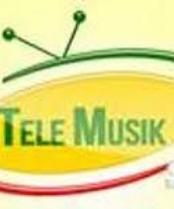 ‹World music› e globalizzazione della cultura: la Telemusik